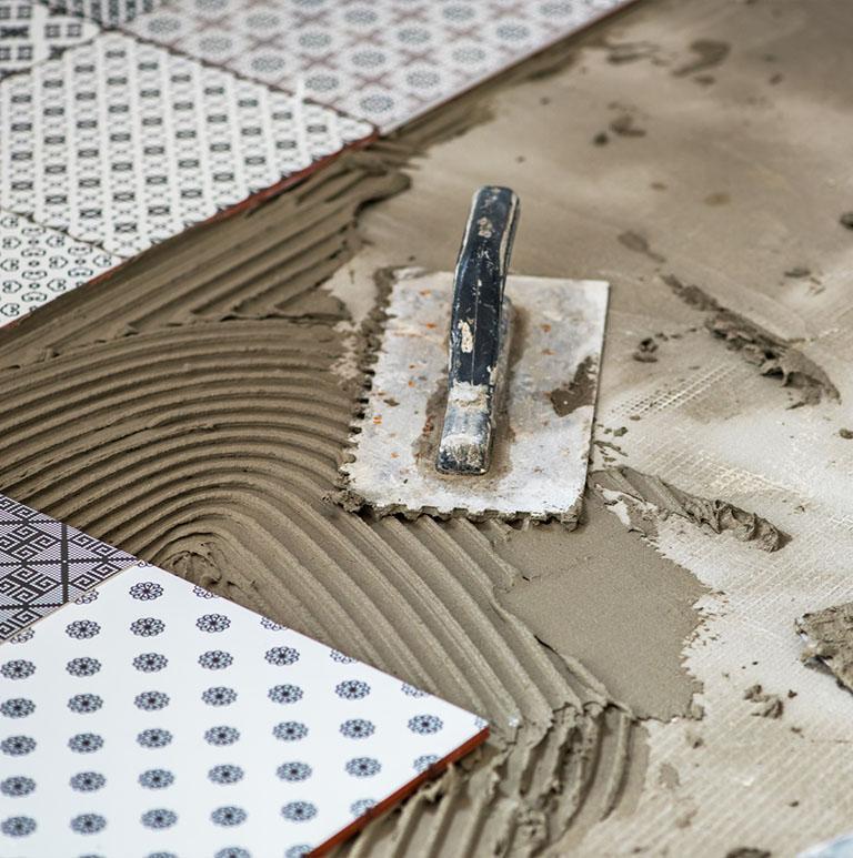 paca zębata leżąca na podłodze przy przyklejonych płytkach podłogowych